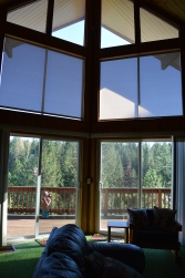 View from inside the vacation home