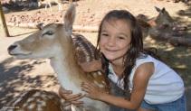 deer_farm_caitlyn