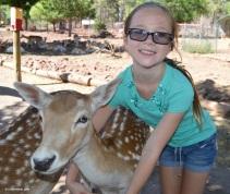 deer_farm_emily