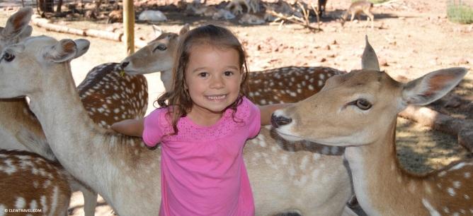 deer_farm_lila