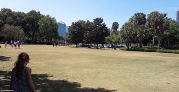 lake_eola_grass