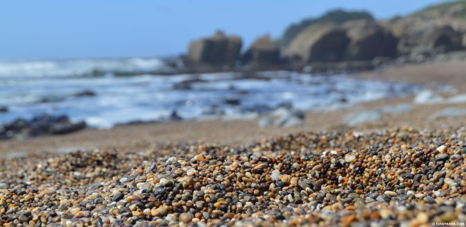pebble_beach_bean_hollow2